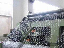 La Chine d'alimentation filet métallique à tête hexagonale (YQ-146)
