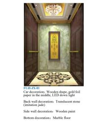 아시아 FUJI 편리한 Vvvf 황금 미러 전송자 집 파노라마 화물 관측 주거 엘리베이터