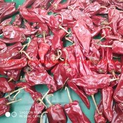 Bajo precio Yidu Pimiento rojo