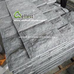 G de champignons654 Granite Paving Stone pour revêtement mural et le jardin