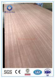 EV Back Pioppo e legno duro Combi Core 12 mm spessore commerciale Compensato per mobili