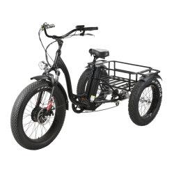 Семьи используется электрический инвалидных колясках для перевозки грузов