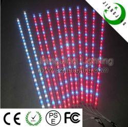 LED de alta potencia Azul Rojo colorido LED Luz marina