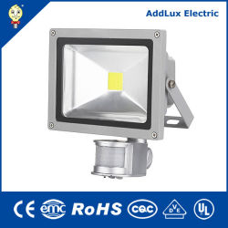 Ce UL Saso IP66 étanche s/n 30W Projecteur LED fabriqués en Chine pour l'extérieur, jardin, rue Park, carré, éclairage extérieur de la meilleure usine de distributeur