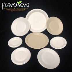 Wegwerpbare, sugarcane Bagasse Pulp Paper Round Plates/Oval Plate voor fruit