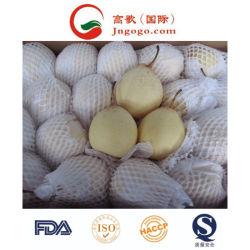 La Chine 72/80/96/112/18kg /Carton Ya pear pear Huang Guan poire d'Asie