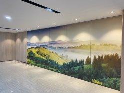 새로운 디자인 도매 장식 벽판 섬유 시멘트 벽 패널