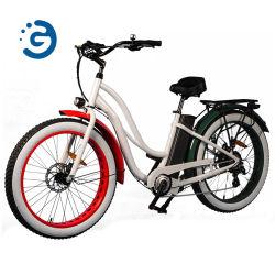 """Neues Rückseiten-Antriebsmotor-elektrisches Fahrrad des Entwurfs-2020 mit Aufhebung Promax 750W 26 """" fettes Gummireifen-Muse E-Fahrrad"""