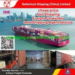 Экспедитор в Индонезию из Китая Belawan морских перевозок на оператора