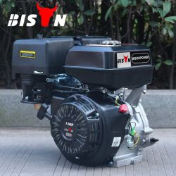 Bison (China) BS188f 1 ano de garantia Motor a Gasolina de Partida com Chave
