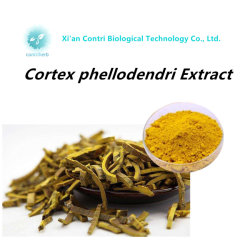 Природные Berberine гидрохлорида Cortex Phellodendri извлечения