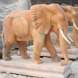 Statue de marbre Life-Size éléphant pour décor extérieur
