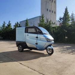 Runhorse 3 Rodas de carga elétrica Mini van de Fast Food Business