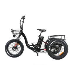 48V 500W 750W Fat Tire 3 roue Caogo vélo électrique avec batterie au lithium