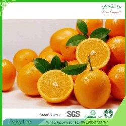 Chinesische frische Navel-Orange vom Fabrik-Großverkauf