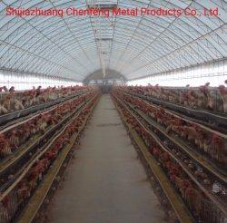Птицы H Type 3 Tier 4 яруса цыпленок слой отсек для батареи
