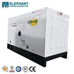 중국 고명한 상표 10.8kw 14kVA Water-Cooled 발전기
