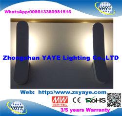 Yaye 18 Hot vendre très bon prix Design le plus récent S/N 6W Indoor appliques murales LED/LED Wall Lamp pour 3/5 étoiles/Home Office décoration avec 2/3 ans de garantie