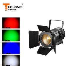 Эффект лампа 300 Вт для домашнего кинотеатра Френеля церкви