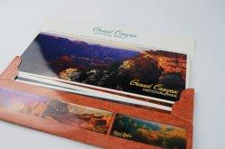 Qualidade Perfeita postal ilustrado colorido Personalizado