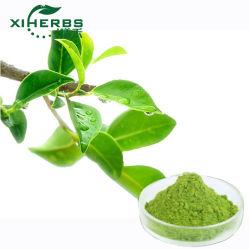 High Quality Plant Extract مياه فورية علبة بودر الشاي الأخضر القابلة للذوبان مسحوق شاي ماتشا