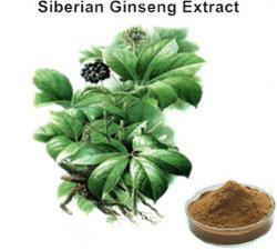 Extrait de racine de ginseng sibérien en poudre pour la peau