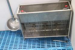Modernos equipamentos de suinocultura Gaiola Animal viveiro de suínos de feltro para vendas