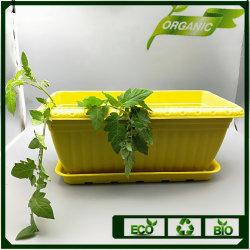 Ecoの世帯の生物分解性のプラントファイバーの植木鉢