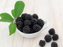 Salud Natural Anti-Cancer Boysenberry