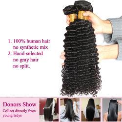 Us Livraison rapide 3PCS Lot vierge malaisien d'un sèche cheveux bouclés malaisien d'onde profonde de la livraison gratuite formule Sexy Cheveux humains