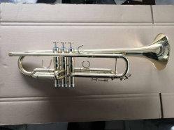 Trompeta Bb7506 (ATR) nueva Laca de Oro Plata