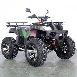 Venda por grosso de 2020 4X4 Elétrico Buggy adultos ATV Fabricante