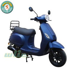 Enduro 50cc gasolina Mini Scooter Maple 50 (Euro 4)