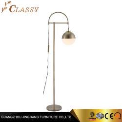 Le métal en acier inoxydable BILLE Lampe LED de plancher pour la vie ou la chambre