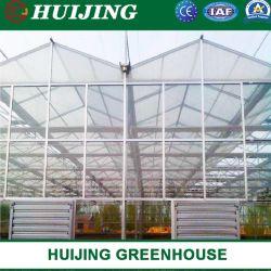 Venlo Glasc$multi-überspannung intelligentes grünes Haus für Gartenbau/Blumen-Markt