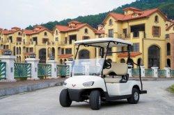 전기 골프 자동차 전기 싼 전기 골프 카트 전기 클럽 CE 인증서가 있는 자동차