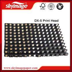 Versione universale economica della testa di stampa di Epson Dx5 F186000 per le stampanti cinesi
