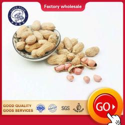 Цена Ex-Factory наилучшее качество чеснок вкус жареного арахиса новой продукции на рынок