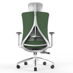팔을%s 가진 2020의 새로운 디자인 특허 증명서 고도 조정가능한 유행과 편한 사무실 의자