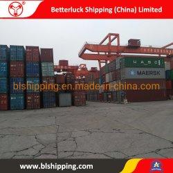 Von China Behälter-Seeland-Transport zum Uzbekistan-Taschkent