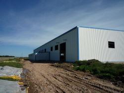 Estructura de acero de la luz de prefabricados taller de construcción con panel de cemento de EPS