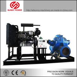 Beste verkaufenbewässerung-Dieselwasser-Pumpe angetrieben durch Dieselmotor