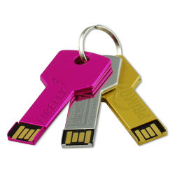 Ce/RoHS OEM Key USB Flash Drive voor Promotion