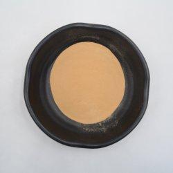 Endothélium Corneum Gigeriae Galli, extrait de la médecine traditionnelle chinoise, de la lumière Marron-jaune Poudre