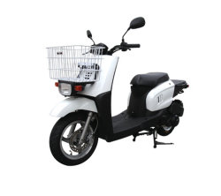 Carga Popular Motor Scooter Scooter Gas H-4