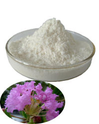 Extrait de Feuilles d'acide Corosolic Banaba 98 % de supplément de la gélule de poudre