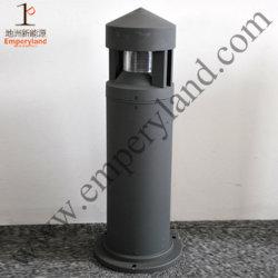 IP65 옥외 장식적인 점화 LED 잔디밭 빛 (DZ-CS-111)