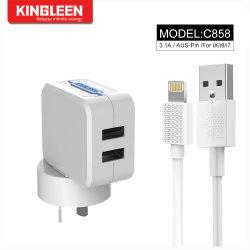 2В1 3фт молнии на кабель USB кабель + SAA штекер двойного порт USB настенный адаптер зарядного устройства хода