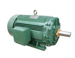 De Elektrische Motor In drie stadia van de Inductie van de Efficiency van NEMA Epact Hight (ontwerp A, B)