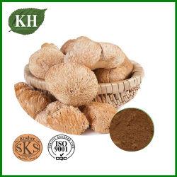 Hericium Erinaceus Extrakt, Polysaccharid 10%-30%, Lions Mane Pilzextrakt